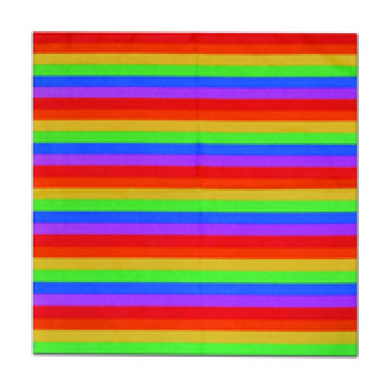 Gay Pride Rainbow Bandana LGBT Head Scarf